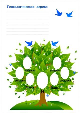 drevo-portfolio
